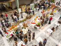 Lustrum Healthy Food Congress: inhoud, netwerken en workshops